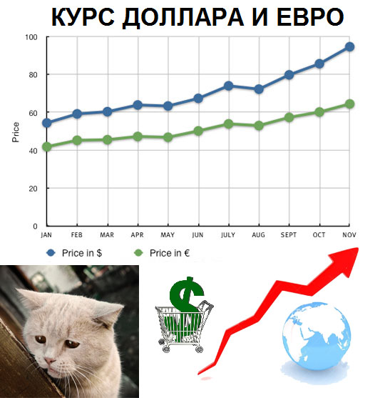 kurs_dollara_povysilsya